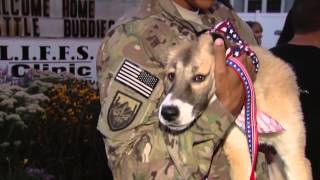 Soldiers Reunited with War Dogs