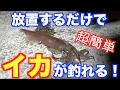 今が旬!!簡単仕掛けでイカ釣り! の動画、YouTube動画。