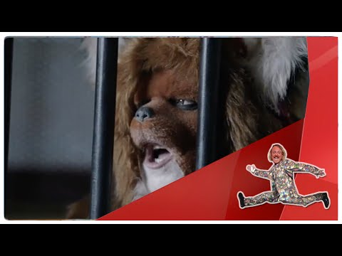 The Urban Fox Gets 'Banged' Up - The Keith Lemon Sketch Show