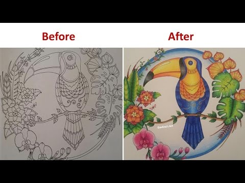 Speed Coloring | Toucan | Magical Jungle by Johanna Basford