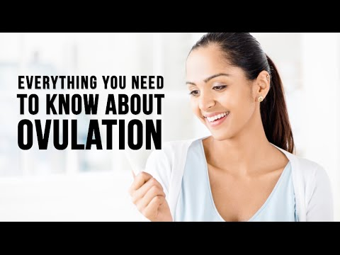 Ovulation What you don't know