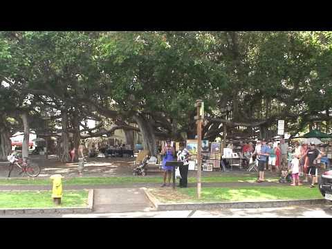 Banyan tree park in Lahaina town - Maui, Hawaii