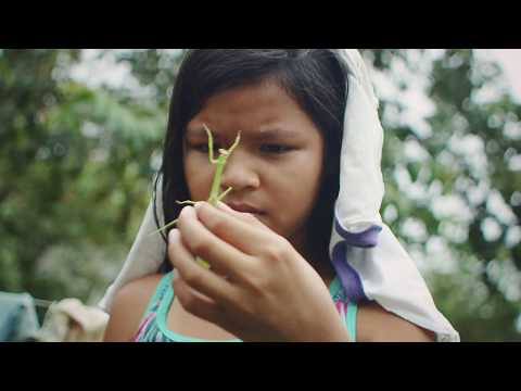 Thumbnail: This Student in the Amazon is Opening Doors with Technology