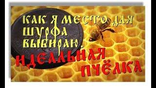 вЫБОР МЕСТА ДЛЯ ШУРФА - ИДЕАЛЬНАЯ ПЧЁЛКА.