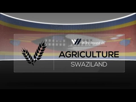 Agriculture  Swaziland - Why invest in 2015