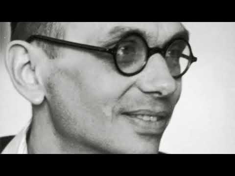 SWR Geniale Mathematiker 2/3 Kurt Gödel und die Grenzen der Erkenntnis