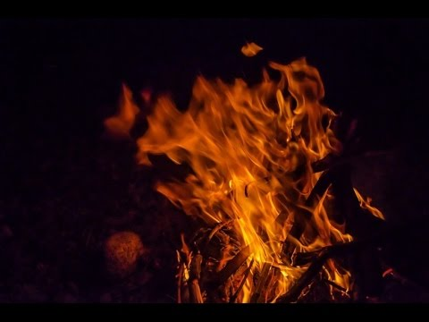 大分・杵築市放火事件 遺体は不明となっていた子ども4人と判明