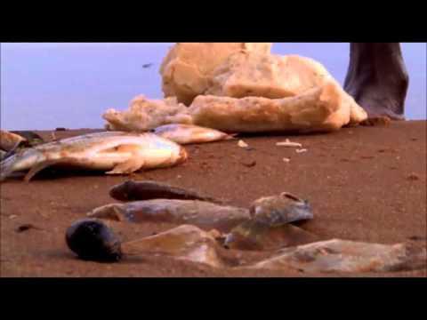 Capture Fisheries Zambia