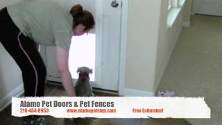 Plexidor Electronic Pet Door Installation San Antonio