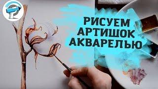 Урок Рисования Акварелью - Рисуем хлопок с Ириной Сарт
