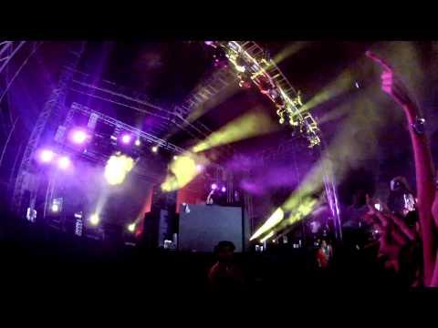 Avicii - Levels (CARACAS,VENEZUELA) 2012 (HD)