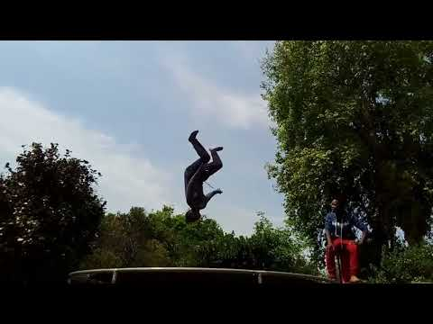 EDWARD FOX  Daily Life 02   trembolin flips