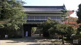 戦国武将 秀吉家臣団の城 Japanese castle 日本の城