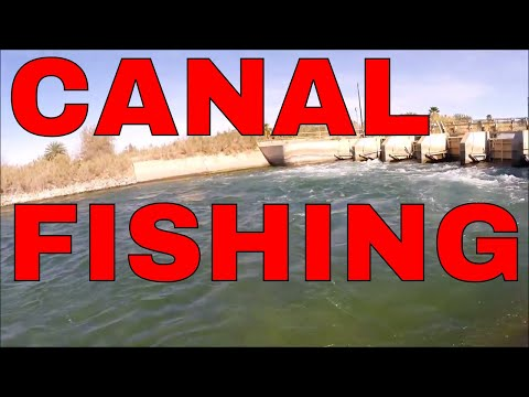 Canal Fishing 101??? Highline Canal El Centro, CA