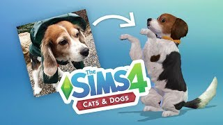 making-molly-the-sims-cats-dogs-ep-5