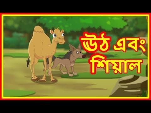 Repeat ঊঠ এবং শিয়াল   Camel And The Jackal