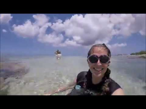 Cuba, Jamaica and Cayman Islands MSC cruise