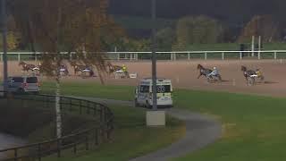 Vidéo de la course PMU PRIX GEORGES LAMBERT