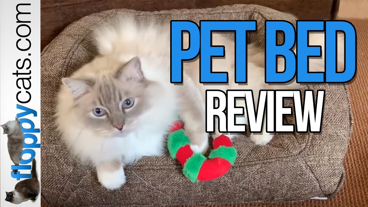 Brentwood Home Runyon Non-Toxic Memory Foam Orthopedic Pet Bed Product Review