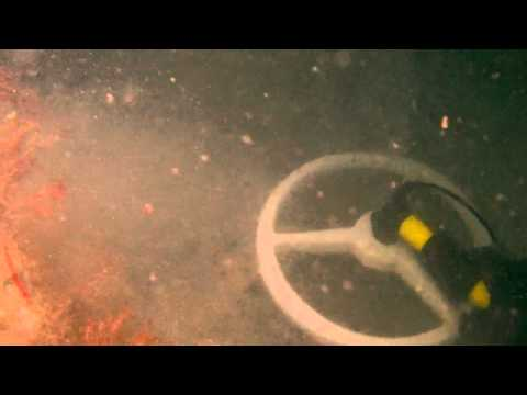 Nice short video of Aquapulse AQ1B underwater metal detector in use