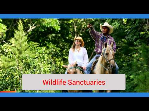 Belize Tourism The Main Natural Attractions
