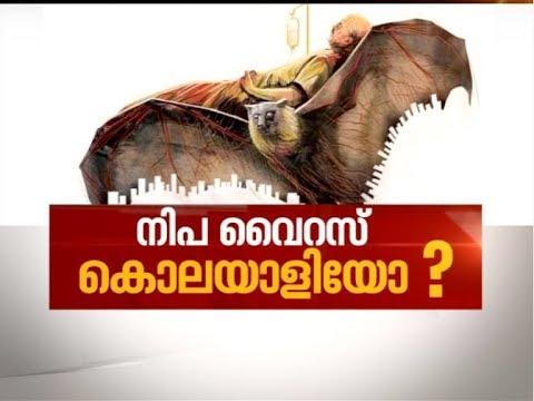 Nipah Virus puts Kerala in Panic Mode   News Hour 21 May 2018