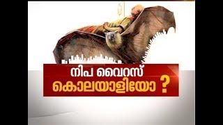 Nipah Virus puts Kerala in Panic Mode | News Hour 21 May 2018
