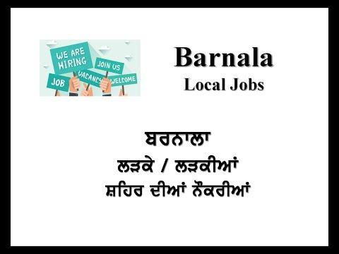 Barnala Local Jobs by Mehra Videos