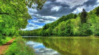 Река Амур 1 05 2021 Пришёл присмотреть место для рыбалки
