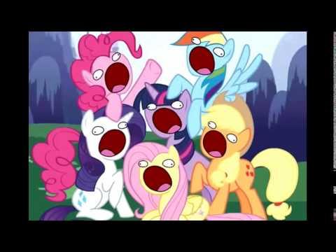 Лошади и пони: интересное видео с участием животных