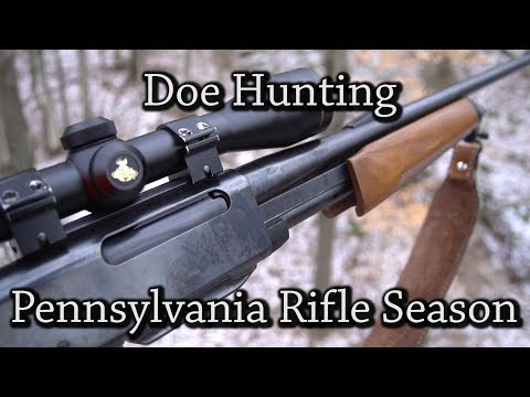 Pennsylvania Rifle Season Doe Hunt 2017
