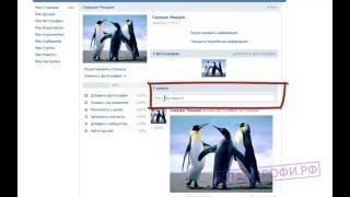 Как Зарегистрироваться Вконтакте Видеоурок для чайников