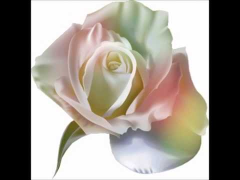 les-roses-blanches-(-michèle-torr-).wmv