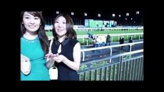 2013 Singapore Airlines International Cup at Singapore Turf Club