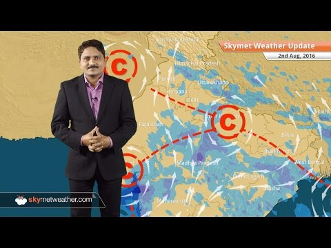 Weather Forecast for Aug 2: Monsoon active in Madhya Pradesh, Andhra Pradesh and Rajasthan