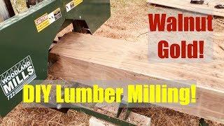 Walnut Gold | Rough Sawn lumber for Woodworking DIY