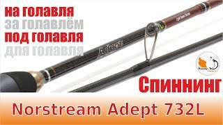 Спиннинг под голавля Norstream Adept 732L.