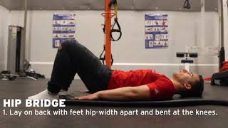 York Lions | Personal Training - Hip Bridge