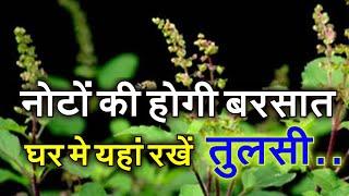 इस दिशा में आज ही रखें तुलसी का पौधा, हर समस्या का मिल जाएगा समाधान Tulsi Vastu Special
