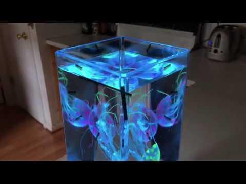 JINX Luminous Jellyfish Spectacular Mood Lamp