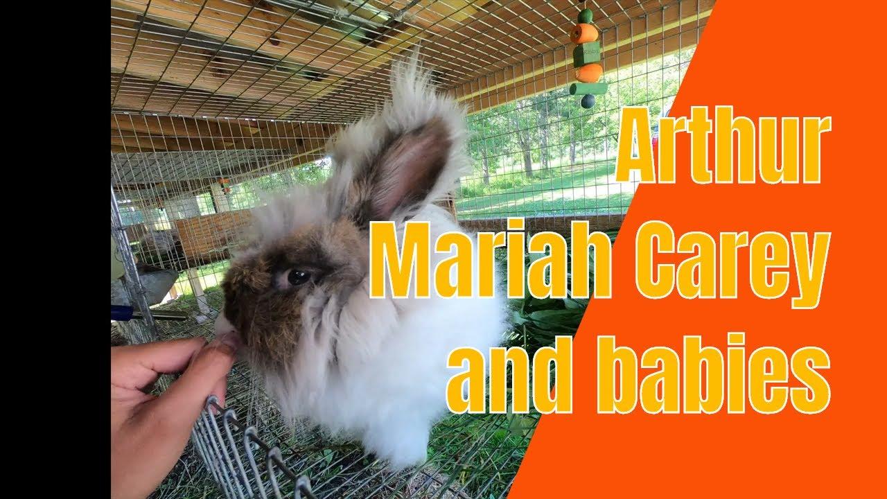 Arthur and Mariah Carey PLUS babies!