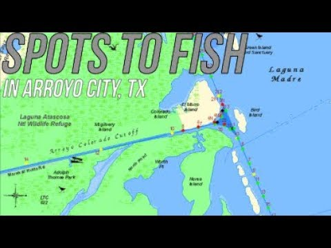 5 Spots To Fish In Arroyo City, TX