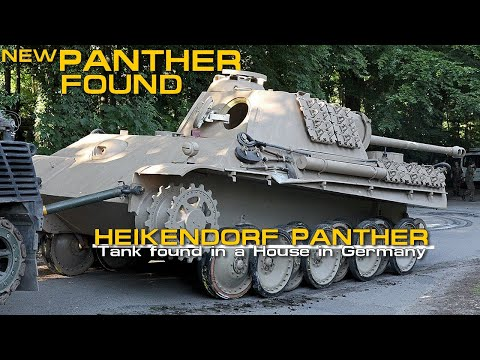 Panther found in a House in Germany - Heikendorf Panther.