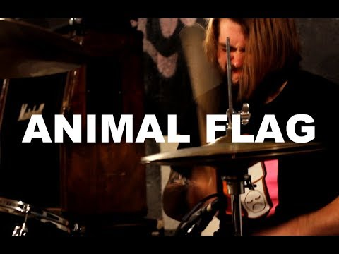 "Animal Flag - ""Sensation"" Live at Little Elephant (2/2)"