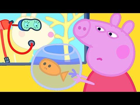 Peppa Pig Français 🐟 Trouver Un Ami Pour Goldie À L'aquarium   Dessin Animé Pour Bébé