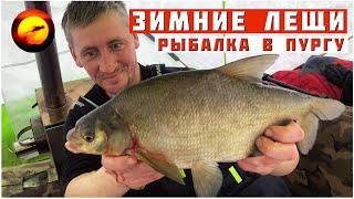 ЛЕЩ ВО ВРЕМЯ ПУРГИ Зимняя Рыбалка в глухозимье