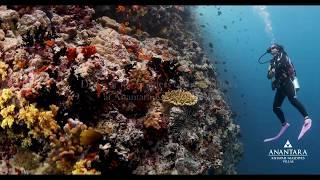 Anantara Kihavah Maldives Villas – Underwater Wond...