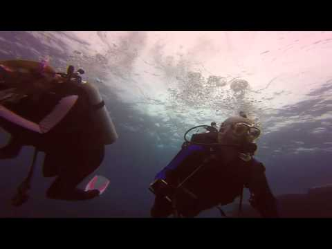 Bermuda Diving Three Sisters Reef 8-11-14 Part 1