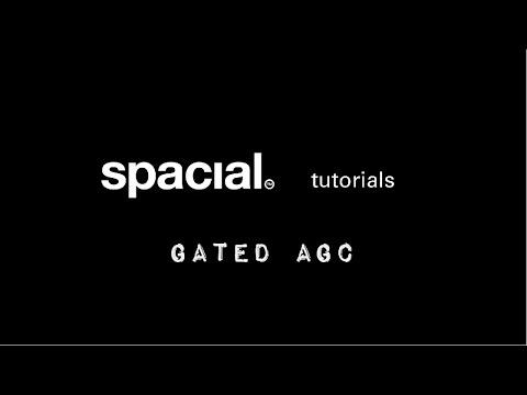 04 Gated AGC