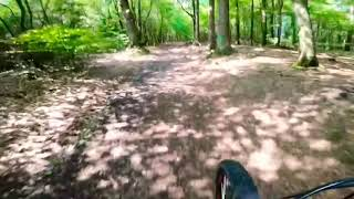 Die RadReporter - Radfahren und Radtouren in Deutschland